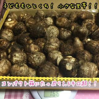 【翌日発送】☆無農薬☆ チビ芋 コンパクト箱詰め詰め 1.6キロ(箱の重さ込み)(野菜)