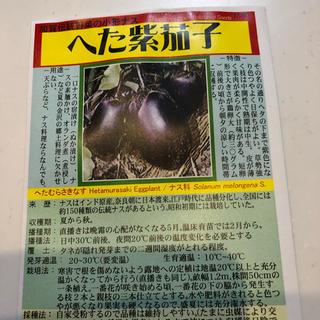 ★送料込★加賀野菜「へた紫茄子」の種10粒(野菜)
