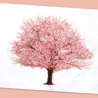 桜タペストリー (絵画/タペストリー)