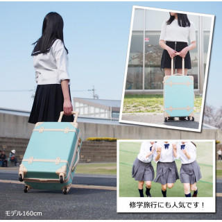 キャリーバッグ キャリーケース スーツケース 機内持込みサイズ S (スーツケース/キャリーバッグ)