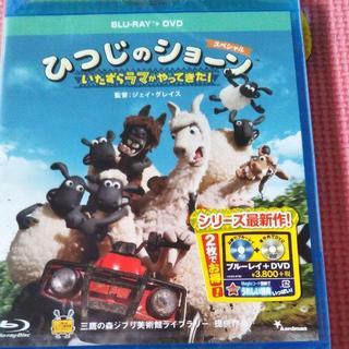 ディズニー(Disney)の専用 ひつじのショーン DVD(外国映画)