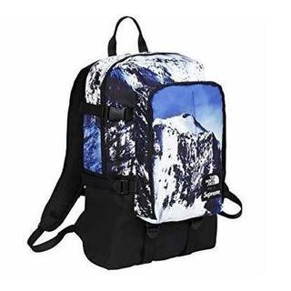 シュプリーム(Supreme)のSupreme The North Face Backpack 6点同封(バッグパック/リュック)