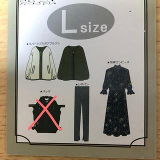 シマムラ(しまむら)のL size フェミニンセット(セット/コーデ)