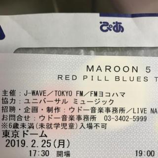 maroon5 東京ドームチケット 2枚連番(海外アーティスト)