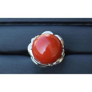 高級品 Pt900 赤珊瑚18.5mmリング/指輪 16号(リング(指輪))