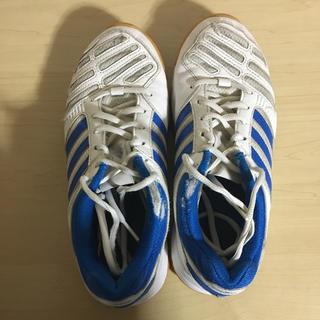 アディダス(adidas)の体育館シューズ(トレーニング用品)