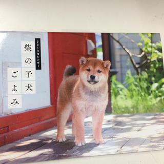 最安値 2019 柴の子犬こよみ(カレンダー/スケジュール)