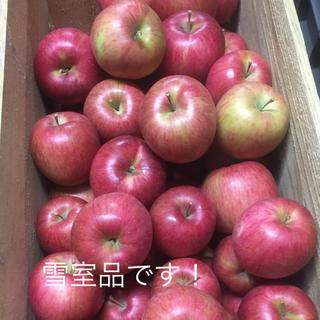 雪室保存品です!青森県産りんご 葉とらずふじ 5キロ(フルーツ)