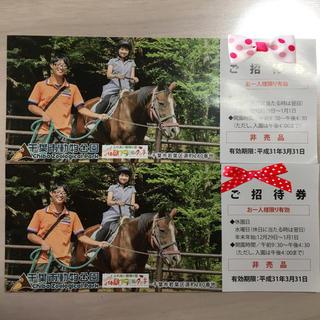 【即決OK】千葉市動物公園 入園券 2枚 ¥1400相当 送料無料 すぐに発送可(動物園)