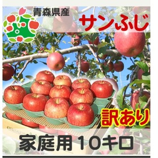 青森産 訳あり サンふじ りんご10kg(フルーツ)
