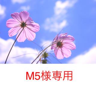 M5様専用(バッグ/レッスンバッグ)