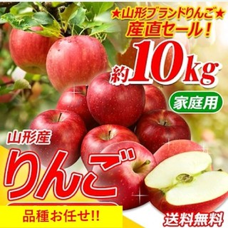 山形県産 訳あり おまかせ りんご10kg(フルーツ)