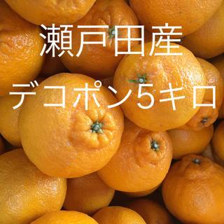【産地直送】広島/瀬戸田産 デコポン 5kg 送料込◎(フルーツ)