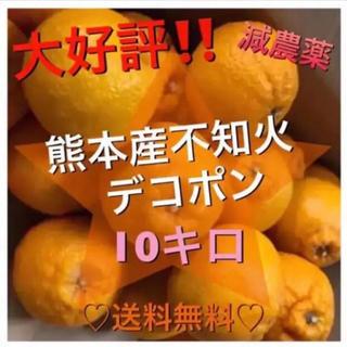 熊本産訳あり不知火デコポン10キロ箱込み減農薬(フルーツ)