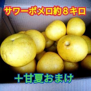 鹿児島産 サワーポメロ 約8キロとおまけの甘夏みかん(フルーツ)