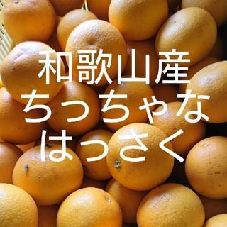 和歌山産 ちっちゃなはっさく 10キロ 送料込み(フルーツ)