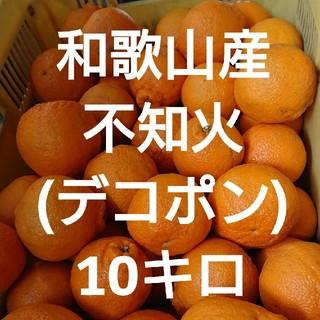 和歌山産 不知火(デコポン) 10キロ 送料込み(フルーツ)