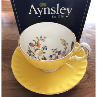 エインズレイ(Aynsley China)の新品未使用 エインズレイ  ティーカップ ソーサーセット イエロー 黄色(グラス/カップ)