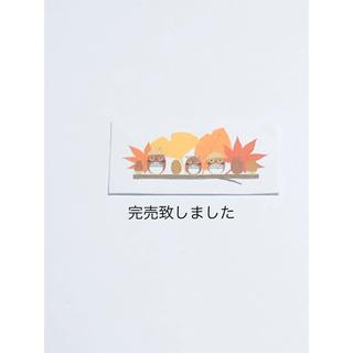 押し花  エリカ♡バーベナ     No.545(各種パーツ)