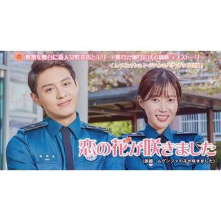 momo様専用(TVドラマ)