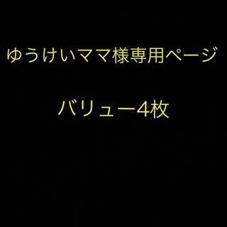 ゆうけいママ様専用ページ(遊園地/テーマパーク)