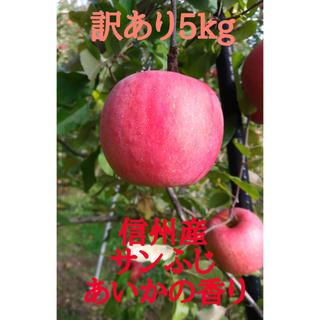 リンゴ 信州【サンふじ】【あいかの香り】約5kg(18玉) 訳あり(フルーツ)