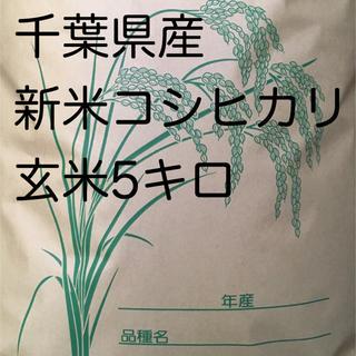 コシヒカリ玄米5キロ