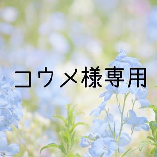 お米 H30 愛媛県産キヌヒカリ 白米 20㎏