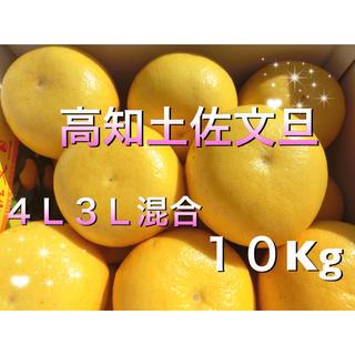 高知土佐文旦 (大玉4L〜3L) 10kg 家庭用(フルーツ)