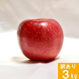 【訳あり】りんご サンふじ 長野県産 3kg 家庭用 徳用 葉取らず(フルーツ)