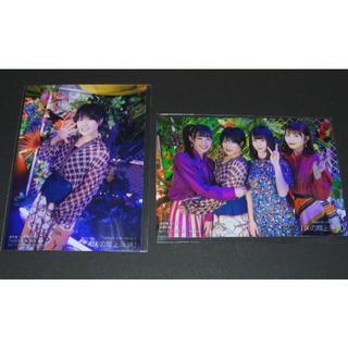 NMB48 - NMB48 床の間正座娘 生写真2枚 城恵理子