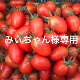 みぃちゃん様専用ページ(野菜)