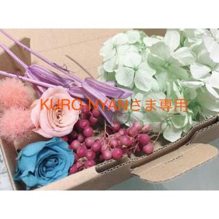 *KURO-NYANさん専用*春色花材04(ドライフラワー)