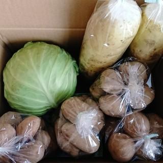 越冬野菜(野菜)