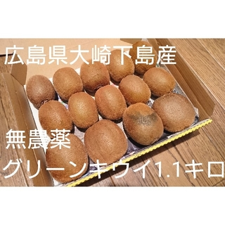 無農薬グリーンキウイ 1.1キロ以上(フルーツ)