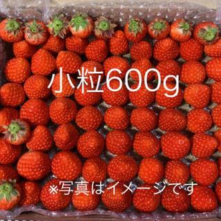 小粒ちゃん♡さがほのか苺600g●いちごイチゴ(フルーツ)