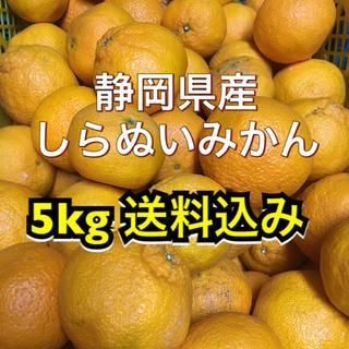 しらぬい みかん 5kg 全国送料込み (でこぽん)(フルーツ)