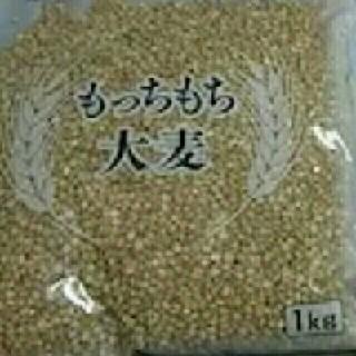 もっちもち大麦