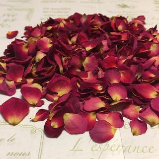 ミニバラ 花びら(シリカゲル乾燥)ドライフラワー★花弁3g★ミニローズ★ミニ薔薇(各種パーツ)