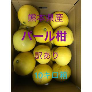 熊本県産 パール柑 訳あり(フルーツ)