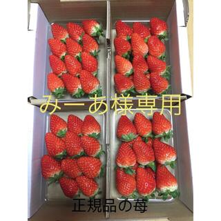 三重県産いちご8パック(フルーツ)
