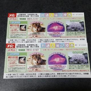 ぱんだ様専用☆   共通入場券(遊園地/テーマパーク)
