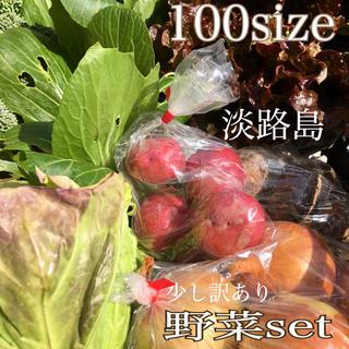 淡路島【 きまぐれ 】100 野菜set(野菜)