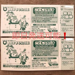 【送料込】東条湖 おもちゃ王国 特別入園券 2枚(遊園地/テーマパーク)