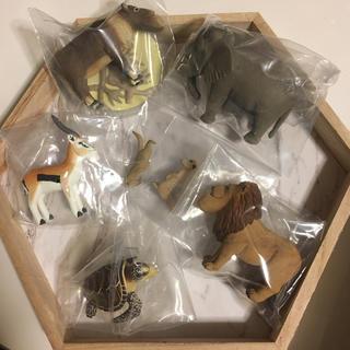 タカラトミーアーツ(T-ARTS)のシャクレルプラネット 6体セット(キャラクターグッズ)