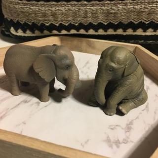 タカラトミーアーツ(T-ARTS)のシャクレルプラネット&ひまなの寝 ゾウセット(その他)