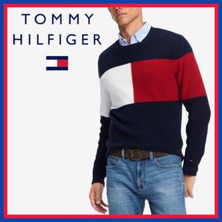 トミーヒルフィガー(TOMMY HILFIGER)の日本未入荷★トミーヒルフィガー クルーネック ロゴ セーター 大きめSサイズ(ニット/セーター)