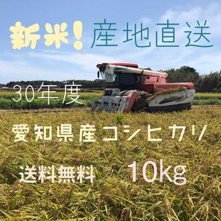 愛知県産コシヒカリ 10㎏(米/穀物)