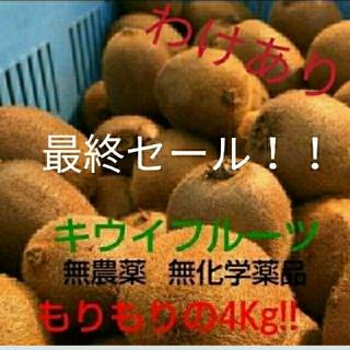 ☆最終セール☆ キウイフルーツ 4kg 有機栽培 訳あり(フルーツ)