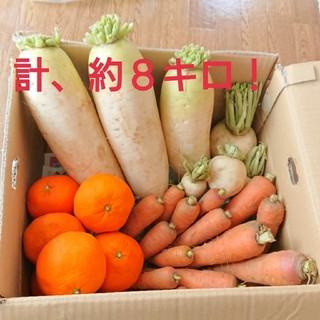 限定一箱  野菜詰め合わせ 大根 人参 かぶ みかん